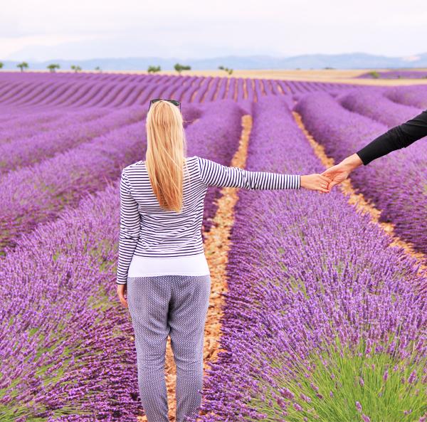 Hose Provence